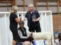 Råstorps-Aspa fick KLSs vandringspris för bästa hondjur